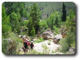 Actividades en el Valle del Cabriel